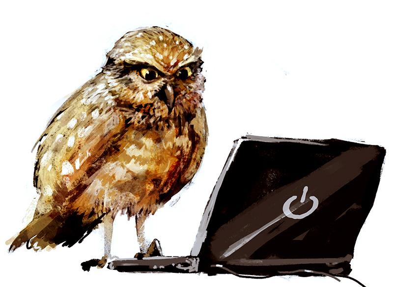 Рисованные совы. Подборка