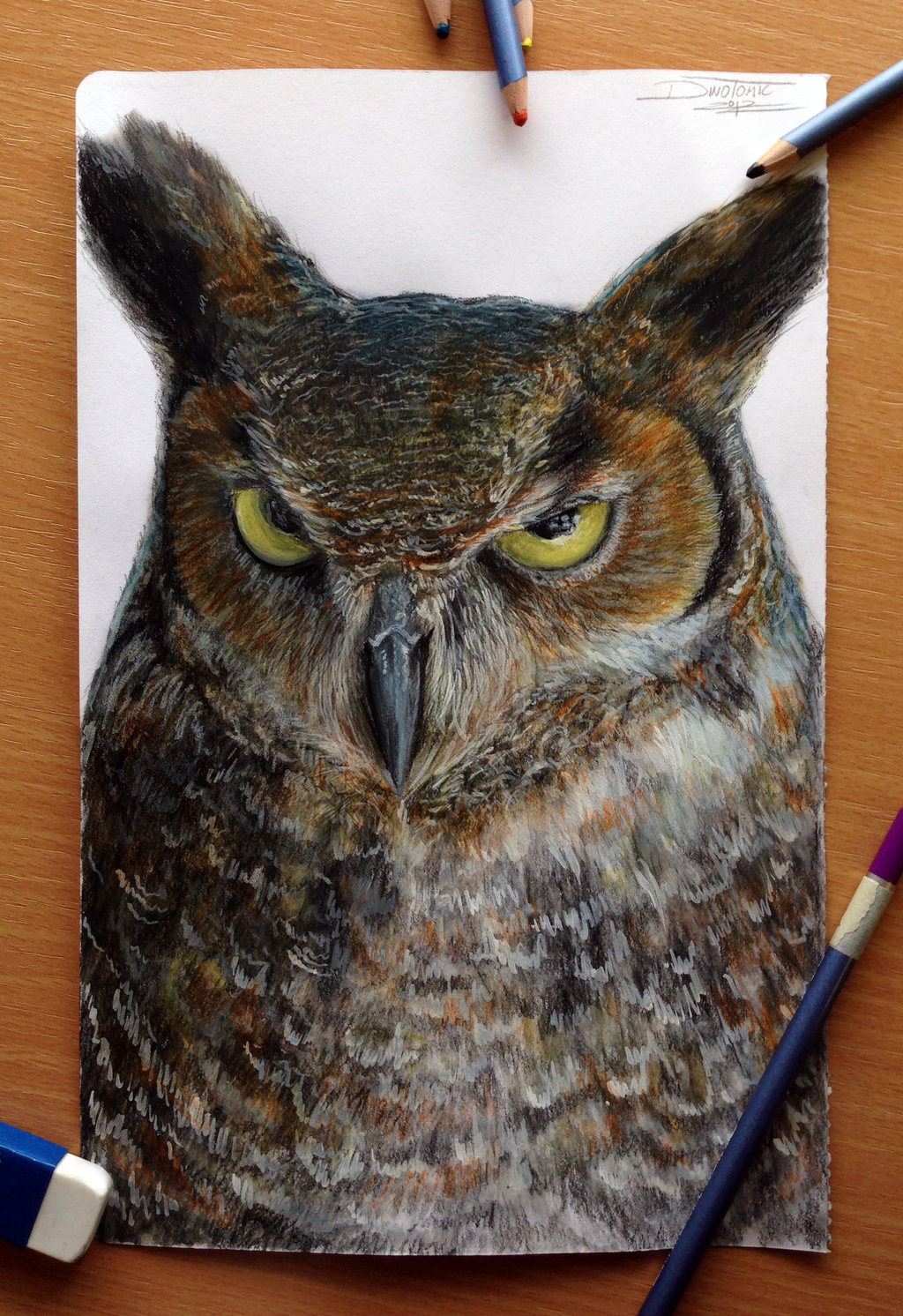 owl_color_pencil_drawing_by_atomiccircus-d5wpbjy