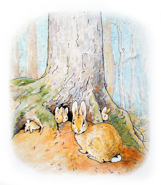 the_tale_of_peter_rabbit_021