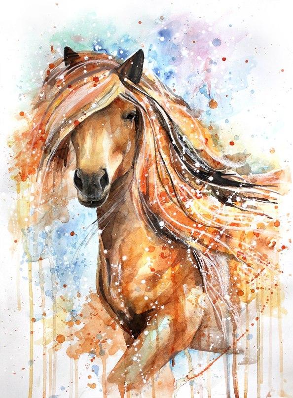 Только лошади летают вдохновенно…