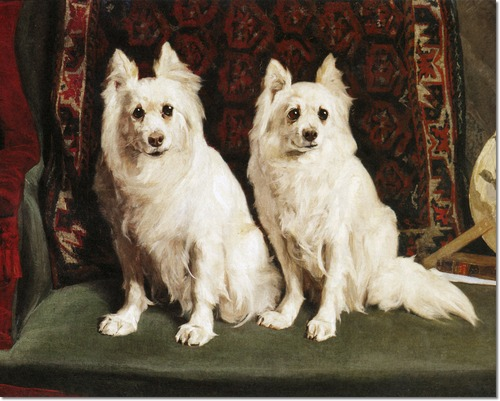 charles-van-den-eycken-german-spitz-before-a-rug-1887