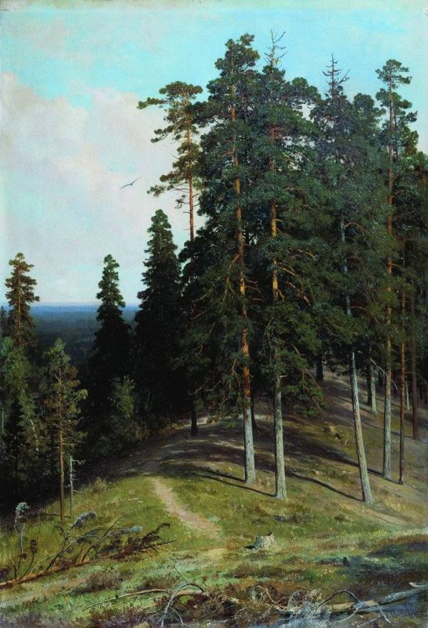b.602.1000.16777215.0...images.stories.picture.publ.shishkin.shishkin-38