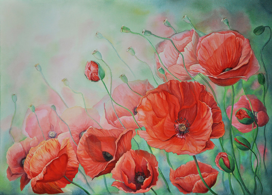 poppies_by_ganusia-d5l9ep5