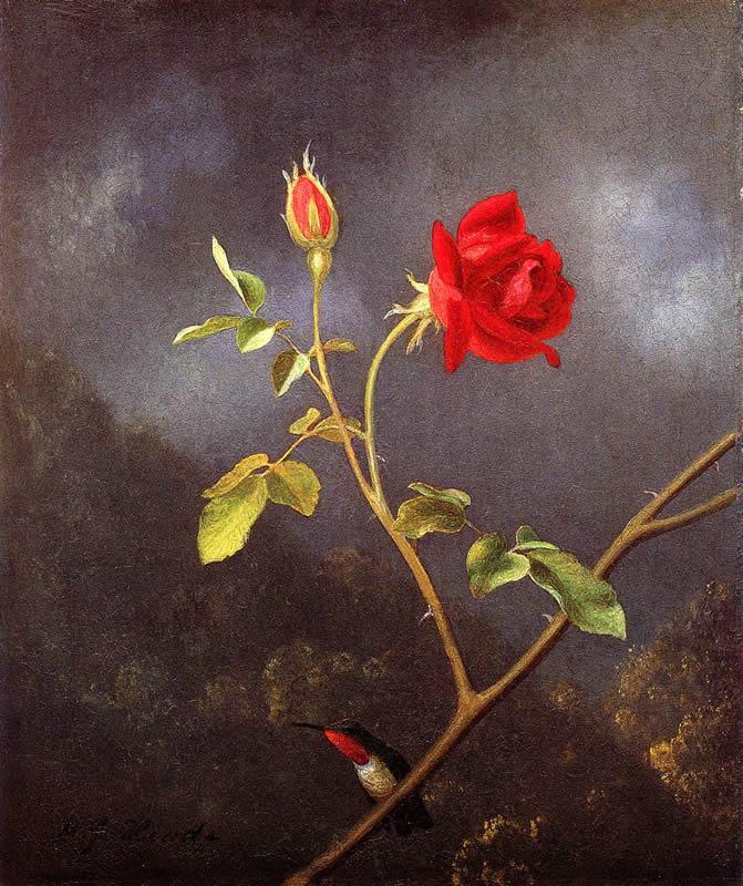 Удивительные калибри на картинах Мартина Джонсона Хеда